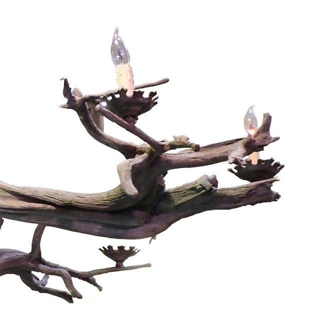 Bronze Driftwood Manzanita Chandelier - Image 4 of 6