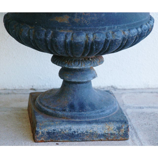 Early 19th-C. Cast Iron Urn Planters - Pair - Image 6 of 11
