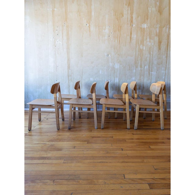 Vintage Italian School Chairs- Set of 8 For Sale - Image 4 of 11