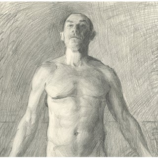 Anatomical Position: Anterior Male Drawing
