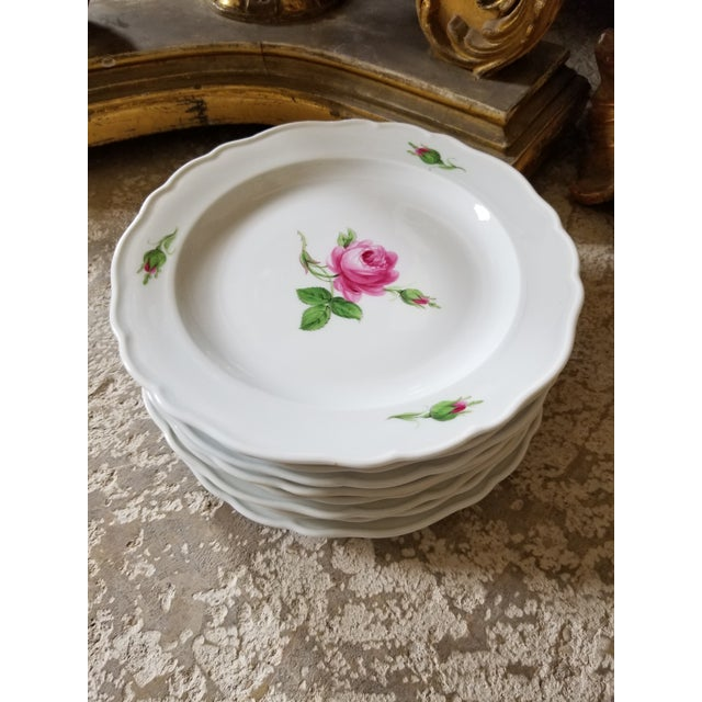 Traditional Set of 8 Meissen Rose Pattern Luncheon Plates For Sale - Image 3 of 3