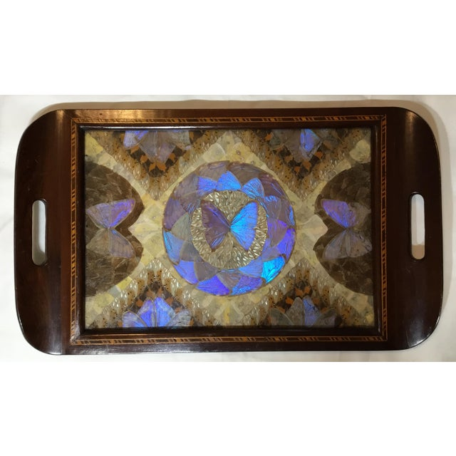 Brazilian Butterfly Wood Tray For Sale - Image 13 of 13