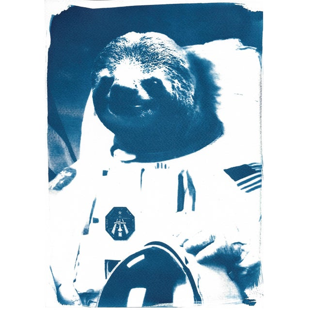 Limited Edition Cyanotype Print- Astronaut Sloth Meme For Sale