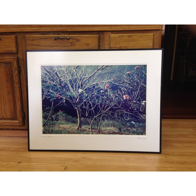 """Plumeria"" Lithograph Signed Allan Bruce Zee '97 - Image 2 of 8"