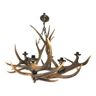 1960s English Antler Chandelier For Sale
