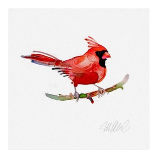 Premium Giclee Print Of Red Cardinal For Sale