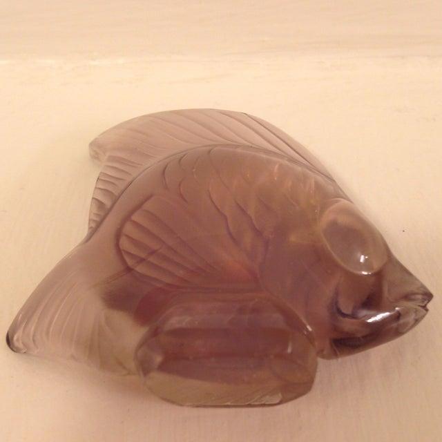 Lalique Angel Fish Mauve For Sale - Image 5 of 8