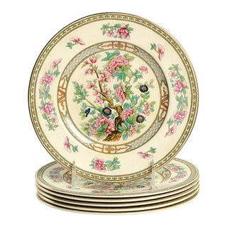 Crown Ducal Indian Tree Salad Plate - Set of 6 For Sale