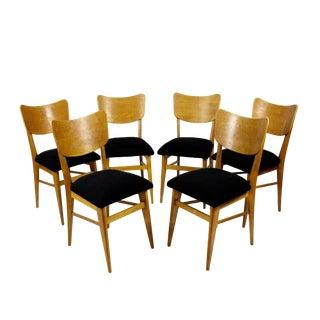 1950s Set of Six Chairs, Solid Oak and Oak Veneer, Black Wool, France For Sale