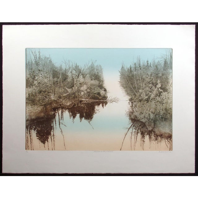 Lovely realistic and very detailed etching of a river surrounded by trees in the pale light of morning. Made by late Czech...