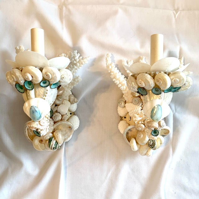 Shell Single-Light Shell Sconces - a Pair For Sale - Image 7 of 7