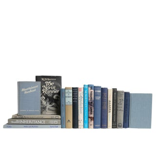Midcentury Blue & Grey Book Set: Mountain Lore and More, S/18 For Sale