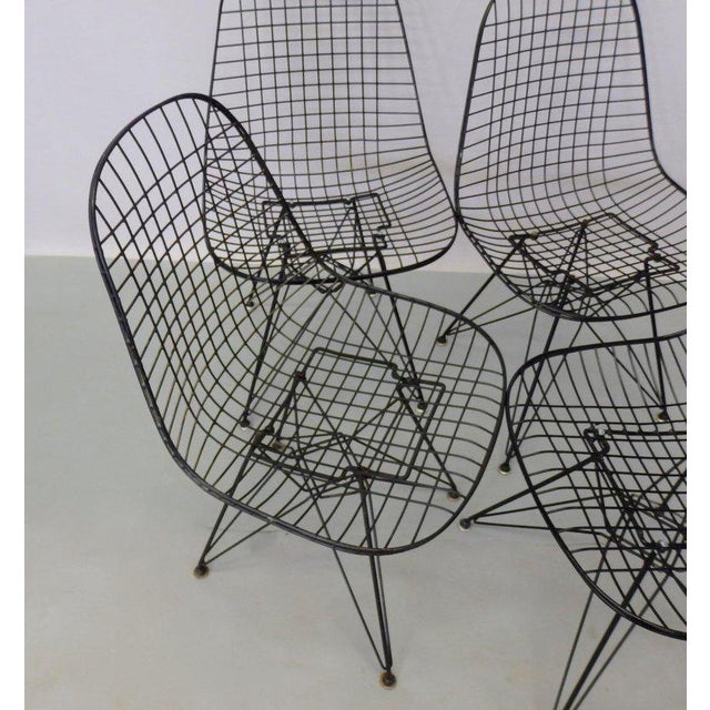 Eames for Herman Miller DKR Wire Chairs on Eiffel Bases - Set of 4 For Sale In Detroit - Image 6 of 7