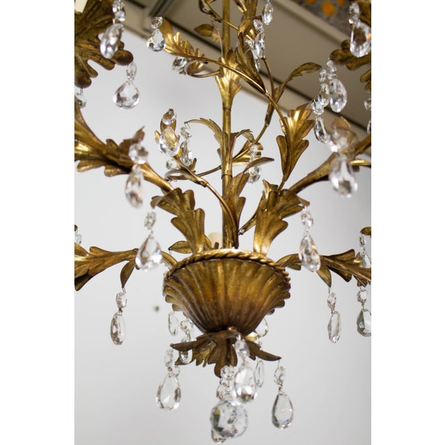 Crystal Italian Five Light Gold Leaf Chandelier With Crystals For Sale - Image 7 of 9