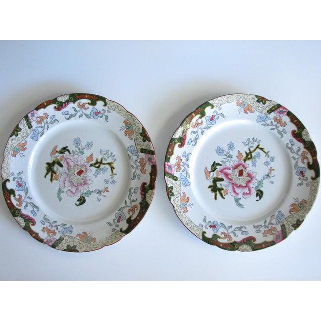 Ashworth Ironstone Antique Ashworth Brothers Hanley English Dinner Plates - Set of 5 For Sale - Image 4 of 10