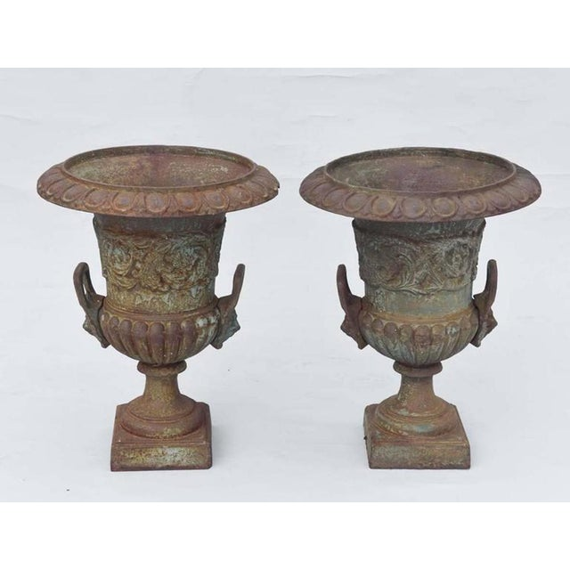 Pair of urns, of cast iron, in campana form with great patina, each having an underturned rum with egg-and-dart...
