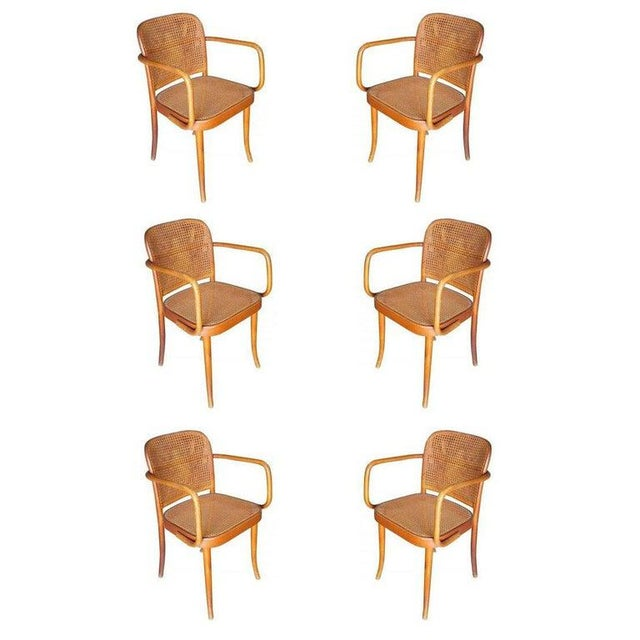 Wood Josef Hoffmann for Stendig Bentwood Cane Dining Chairs, Set of Six For Sale - Image 7 of 7