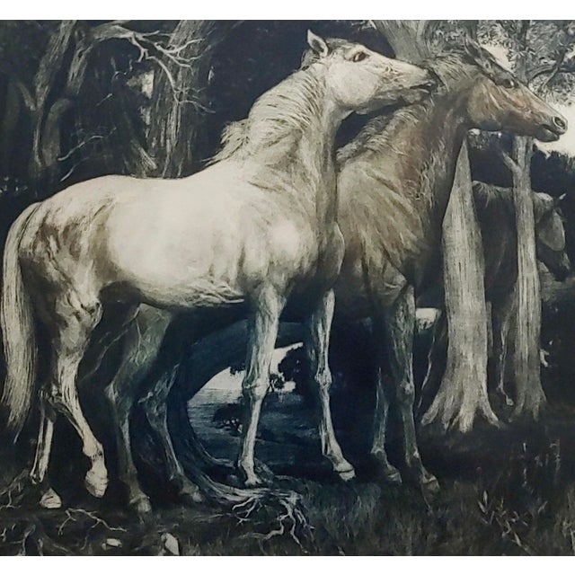 g.h. Rothe - Pair of Horses in Love - Beautiful Color Mezzotint -Pencil Signed For Sale - Image 4 of 10