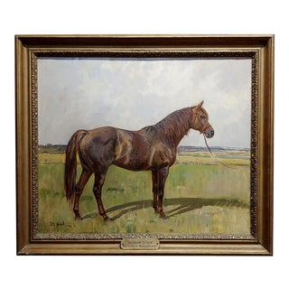 Peter Biegel -Matador , Portrait of a Horse -Oil Painting For Sale