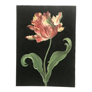 Marianne Stikas Tulip Drawing For Sale