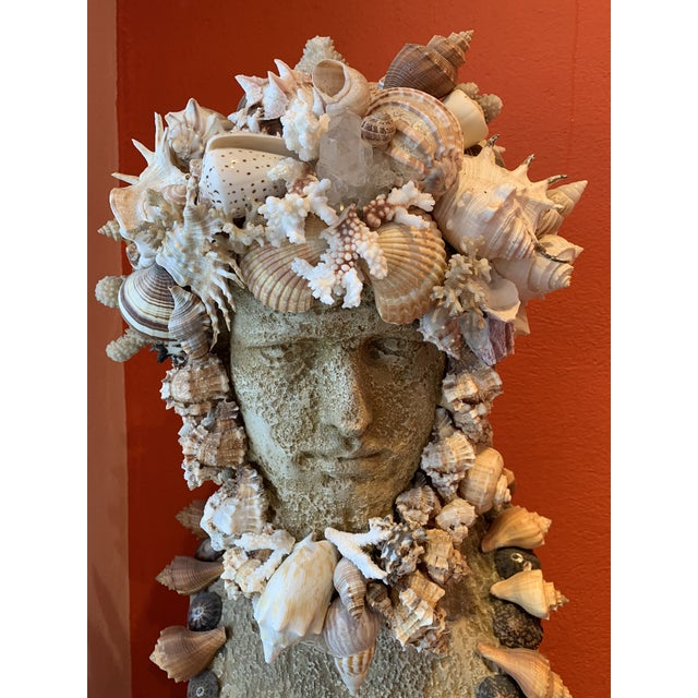 Sea God Seashell Bust For Sale In West Palm - Image 6 of 8