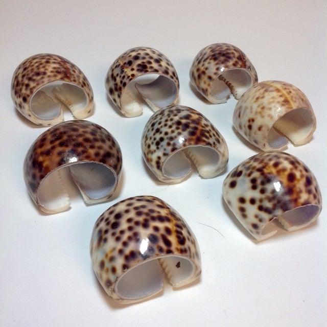 Natural Cheetah Shell Napkin Rings - Set of 8 - Image 2 of 6