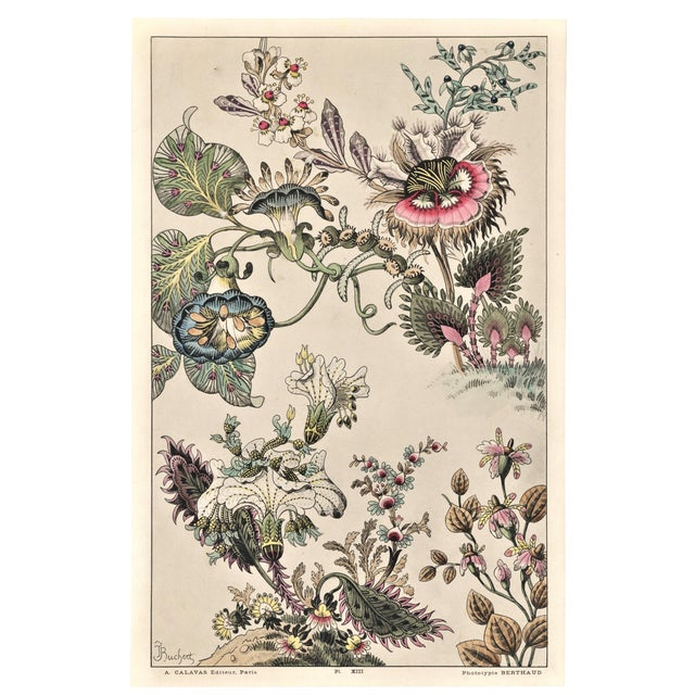 Rare-c1880s French Botanical Lithograph-fantasy Flowers For Sale