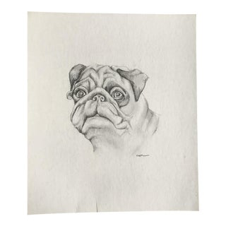 """Pug Portrait"" Original Drawing"