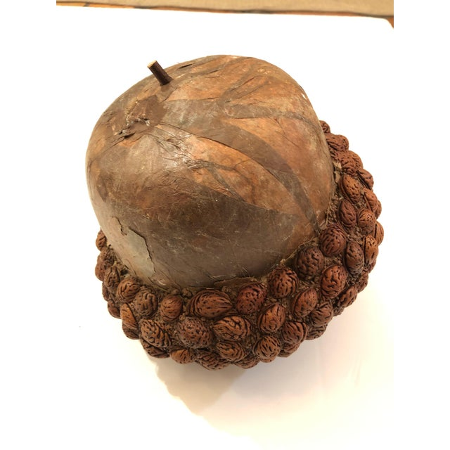 Arts & Crafts Organic Acorn Sculpture For Sale - Image 11 of 11