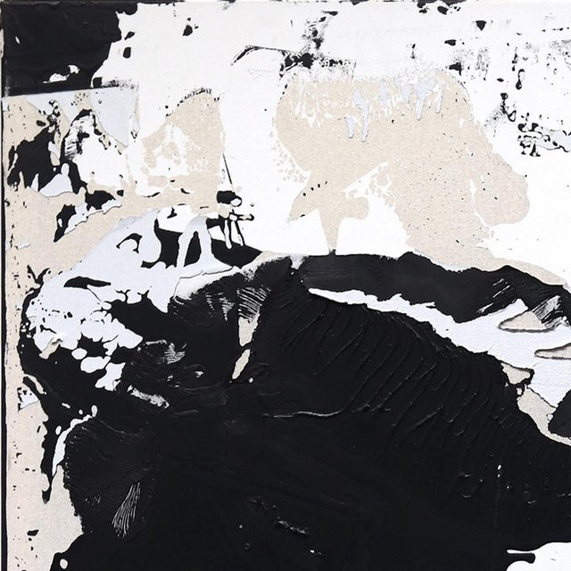 Cole Altuzarra's expressionistic abstract paintings are often distinctive monochromatic black and white. Physically and...
