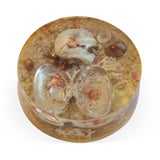 Image of 1960s Lucite Cased Seascape Paperweight For Sale