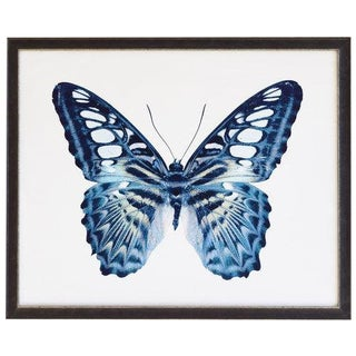 "Blue Spotted Butterfly - 32"" X 26"" For Sale"