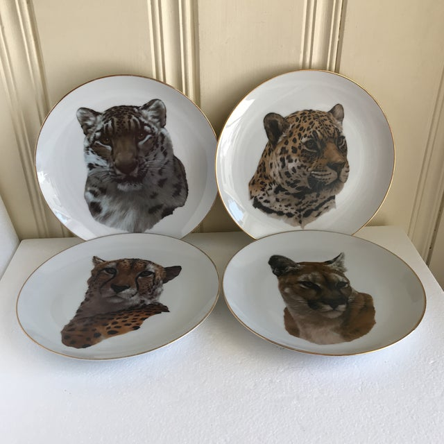 Vintage limited edition hand painted set of four leopard plates. Gold rimmed fine china with assorted cheetah, snow...