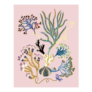 Sea Garden Vignette Giclee Print by Sarah Gordon For Sale