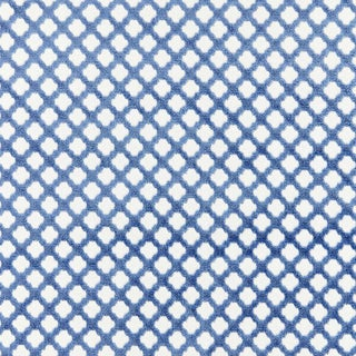 Scalamandre Pomfret Fabric in Lapis Sample For Sale