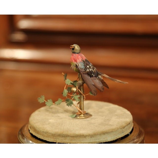 19th Century French Automaton Singing Bird in Brass Cage For Sale In Dallas - Image 6 of 13
