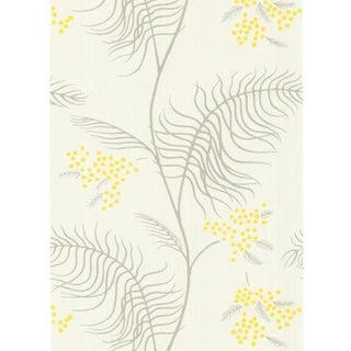 Cole & Son Mimosa Wallpaper Roll - White For Sale