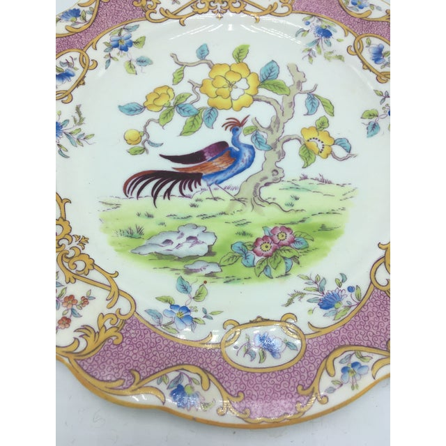 Chinoiserie Vintage Coalport Chinoiserie Plate For Sale - Image 3 of 6