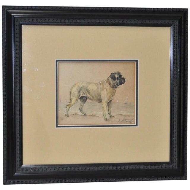 1895 Bullmastiff Watercolor by R.F. Weir - Image 1 of 5