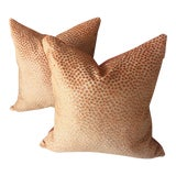 Image of Contemporary Scalamandre Raised Floral Apricot Velvet Pillows - a Pair For Sale