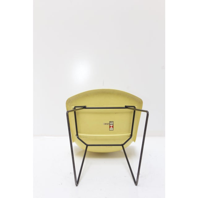 Knoll Bertoia Fiberglass Side Chair Yellow For Sale - Image 5 of 11