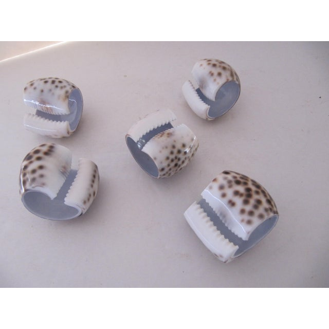 Nautical Shell Napkin Rings-5 Pieces For Sale - Image 3 of 4