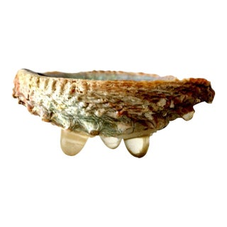 Mid-Century Abalone Shell Footed Bowl