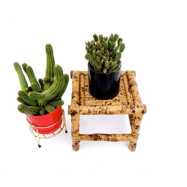 Brown Vintage Tortoise Bamboo Plant Stand For Sale - Image 8 of 11
