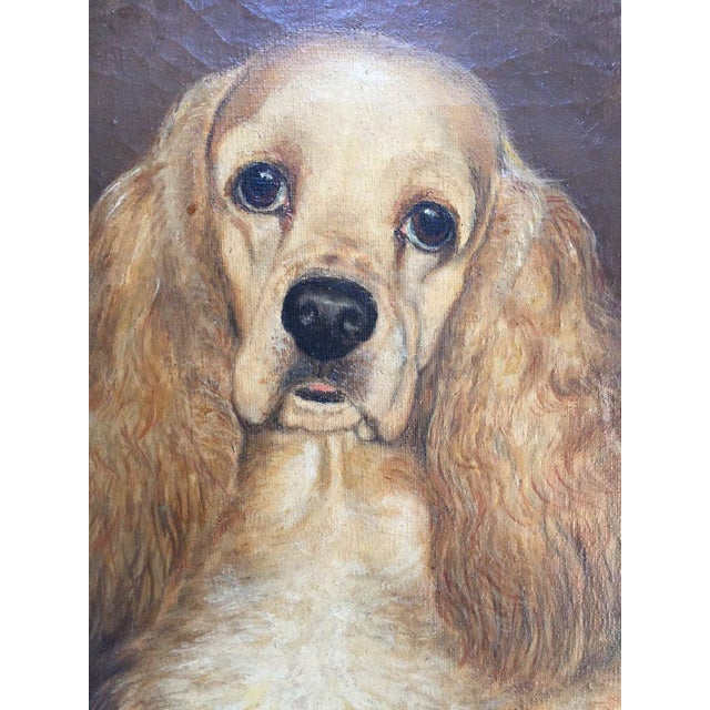 Canvas Vintage Mid-Century Cocker Spaniel Portrait Oil Painting For Sale - Image 7 of 13