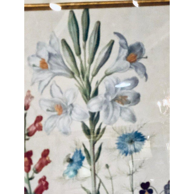 1990s Pair of Botanicals Chelsea House Labels on Reverse. Fine Frames For Sale - Image 5 of 7