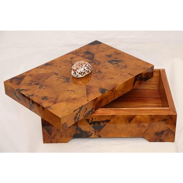 Eugenio Tavola by Oggetti Horn & Shell Box Over Wood For Sale In Miami - Image 6 of 9