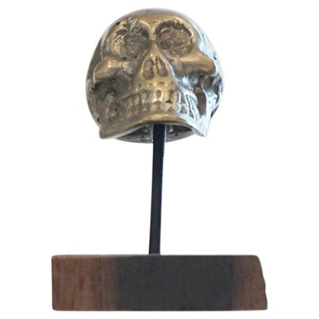 Antique Brass Skull on Walnut Base - Image 1 of 4