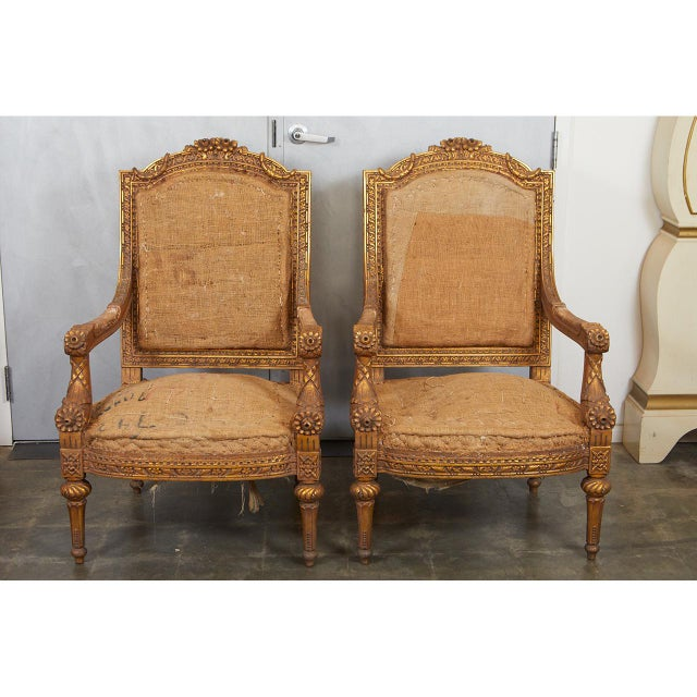 A pair of Louis XVI style arm chairs with an antique gold finish. The frames are are heavily carved with patterned, flora...