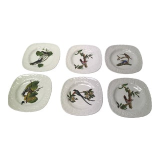 Set of Six Birds of America Porcelain Dessert Hand-Painted Plates For Sale
